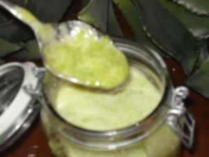 Aloe Arborescens per uso interno
