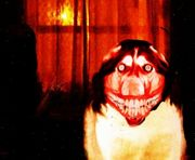 Smile.dog creepypasta