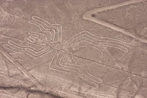 Linee di Nazca Ragno