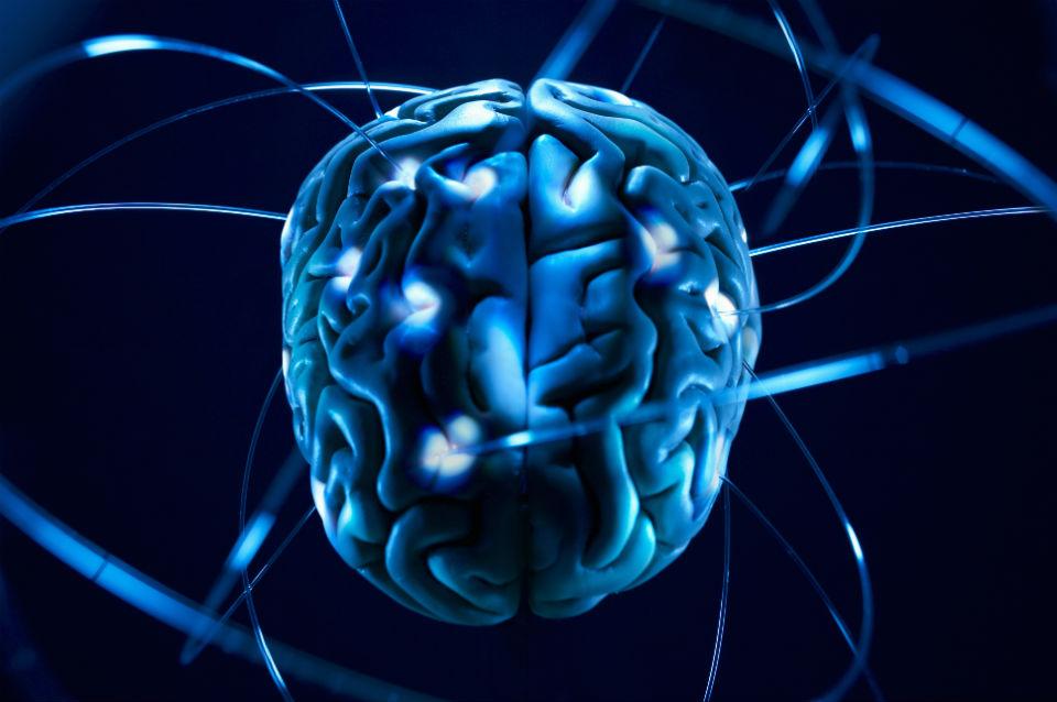 Il potere del cervello quantico